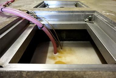 le vin en fermentation